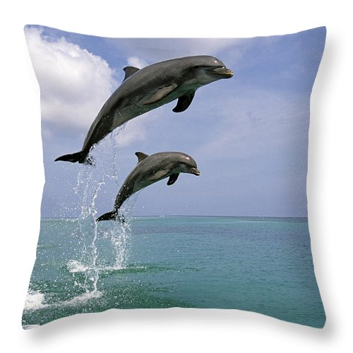 Concept Throw Pillow featuring the photograph Pair Of Bottle Nose Dolphins Jumping by Tom Soucek