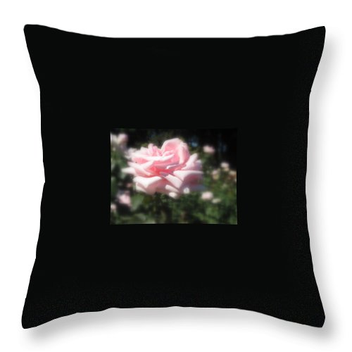 Large Pale Pink Rose Throw Pillow featuring the photograph Pale Pink Rose I by Jacqueline Russell