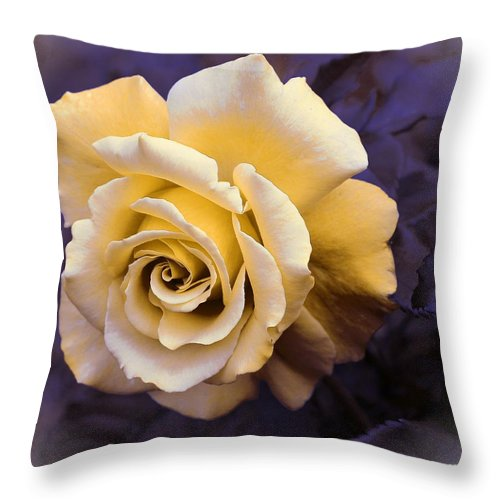 Pale Yellow Rose Throw Pillow featuring the photograph Pale Yellow Rose by Barbara Griffin
