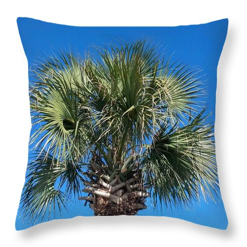 Blue Sky Throw Pillow featuring the photograph Palm Against Blue Sky by Mike Niday