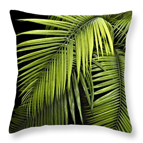 Portrait Throw Pillow featuring the photograph Palm Leaves by Judy Johnson