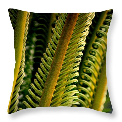 Palm. Palm Leaves Throw Pillow featuring the photograph Palm Reading by Rosanne Jordan