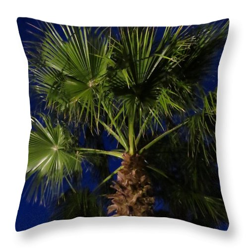 Palm Tree Throw Pillow featuring the photograph Palm Tree At Night by Zina Stromberg