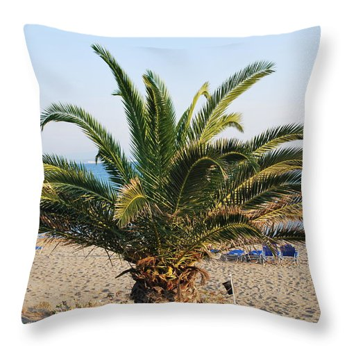 Palm Tree Throw Pillow featuring the photograph Palm Tree By The Beach by George Katechis