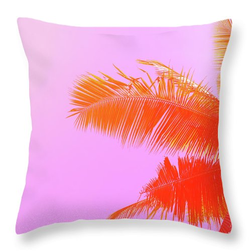 Orange Color Throw Pillow featuring the photograph Palm Tree On Sky Background. Palm Leaf by Slavadubrovin