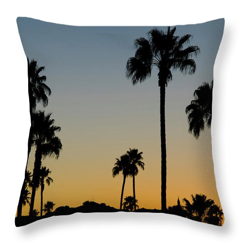 Scenics Throw Pillow featuring the photograph Palm Trees At Sunset by Chapin31