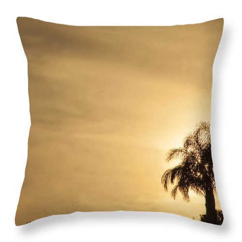 Palm Trees Throw Pillow featuring the photograph Palm Trees Sunset Over At Sea Of Galilee by Richard Nowitz