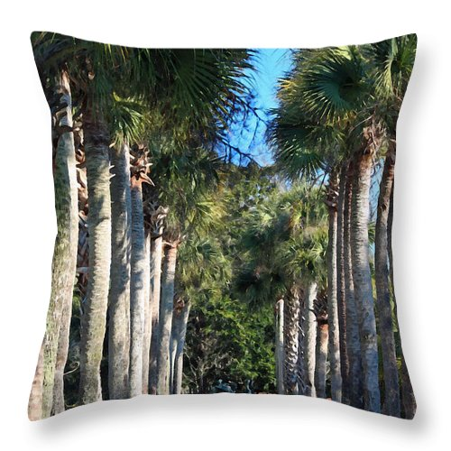 Palmetto Throw Pillow featuring the photograph Palmetto Alee by Suzanne Gaff