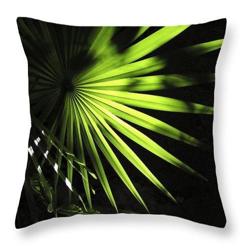 Palmetto Throw Pillow featuring the photograph Palmetto And Rays by Marilyn Hunt