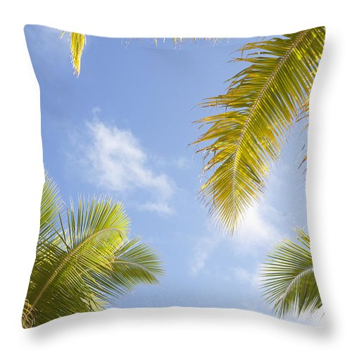 Blue Throw Pillow featuring the photograph Palms And Sky by Brandon Tabiolo