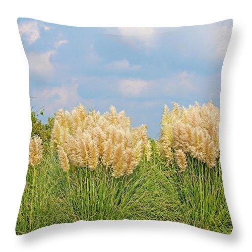 Pampas Grass Throw Pillow featuring the photograph Pampas Grass by Cynthia Guinn