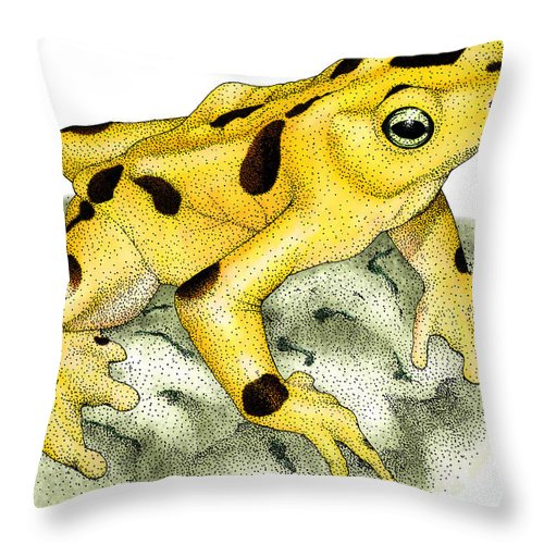 Art Throw Pillow featuring the photograph Panamanian Golden Frog by Roger Hall