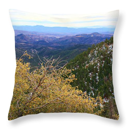 Roena King Throw Pillow featuring the photograph Panorama Emory Pass Vista Nm by Roena King