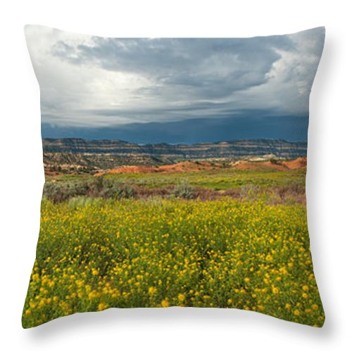 North America Throw Pillow featuring the photograph Panorama Striaght Cliffs And Rabbitbrush Escalante Grand Staircase by Dave Welling