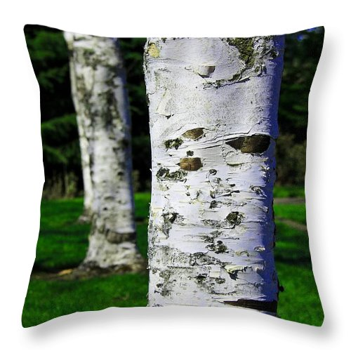 Paper Birch Throw Pillow featuring the photograph Paper Birch Trees by Aaron Berg