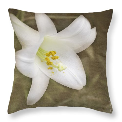 Flowers Throw Pillow featuring the photograph Paper Lily by Arlene Carmel