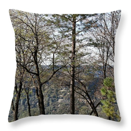 Butte Creek Canyon Throw Pillow featuring the photograph Paradise View by Michele Myers