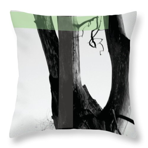 Jamie Lynn Gabrich Throw Pillow featuring the photograph Parish by Jamie Lynn