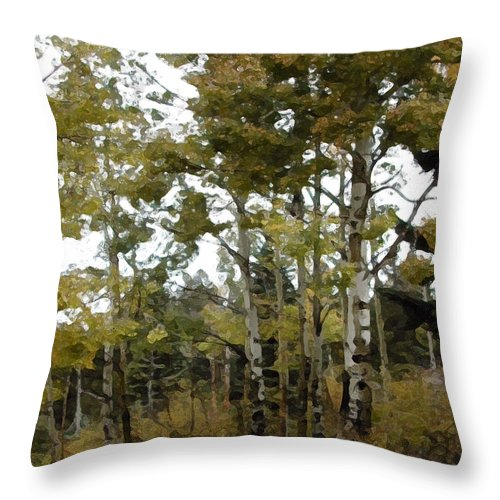 Trees Throw Pillow featuring the photograph Park It There by Jeanne A Martin