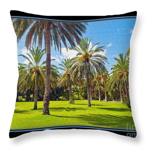 Park Throw Pillow featuring the photograph Park Open Area 2 by Larry White