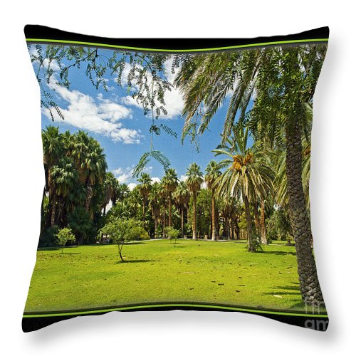 Park Throw Pillow featuring the photograph Park Open Area by Larry White