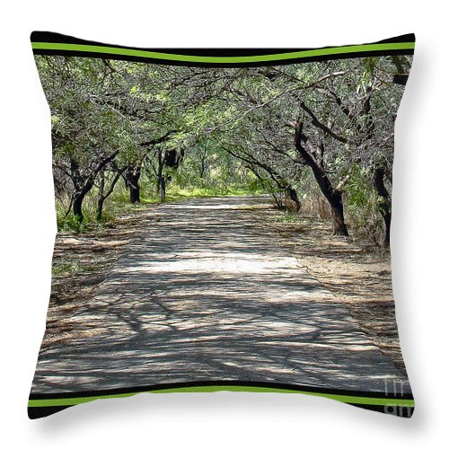 Park Throw Pillow featuring the photograph Park Roadway by Larry White