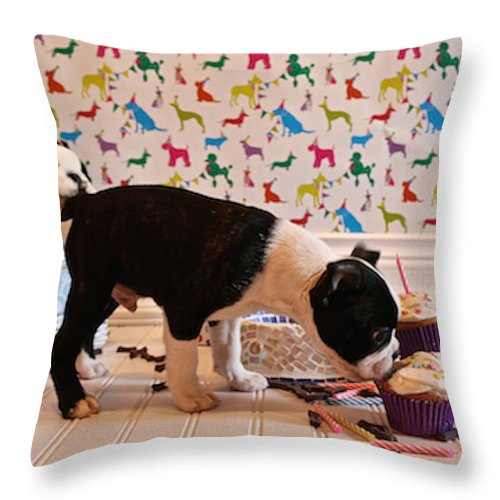 Animal Throw Pillow featuring the photograph Party On Puppy by Susan Herber