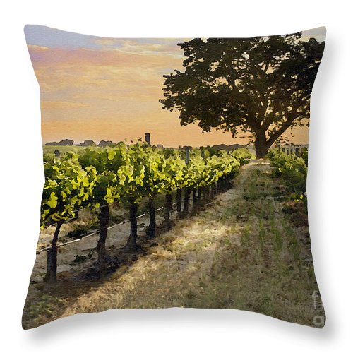 Vineyard Throw Pillow featuring the photograph Paso Vineyard by Sharon Foster