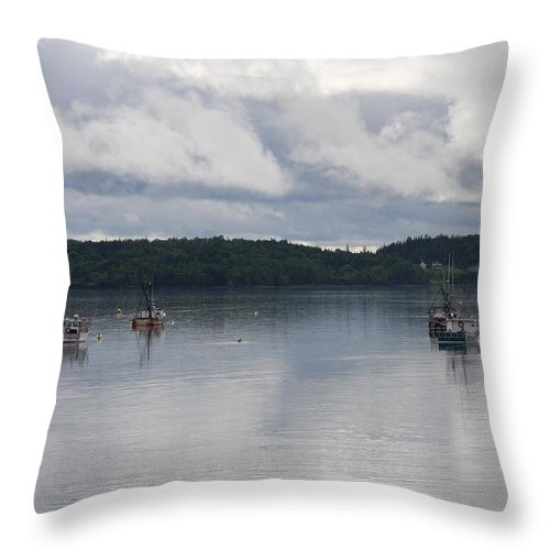 Passamaquoddy Bay Throw Pillow featuring the photograph Passamaquoddy Bay by Christiane Schulze Art And Photography