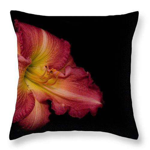 Passionate Throw Pillow featuring the photograph Passionate Lily 20 by Douglas Barnett