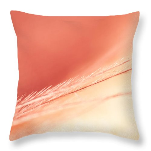 Feather Throw Pillow featuring the photograph Pastel Feather by Lauri Novak