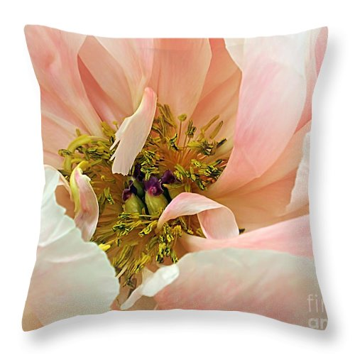 Photography Throw Pillow featuring the photograph Pastel Floral by Kaye Menner