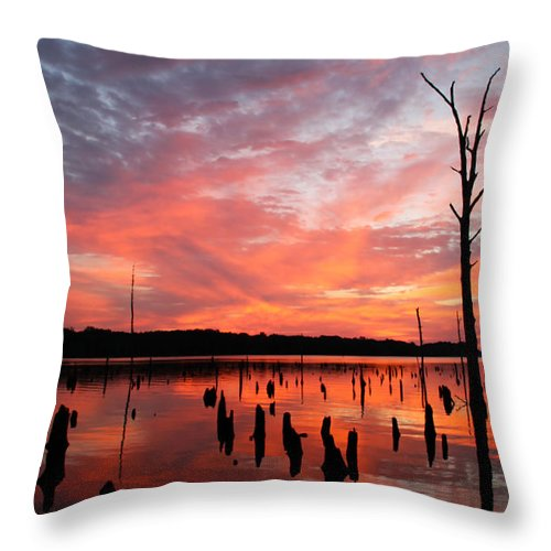 Sunrise Throw Pillow featuring the photograph Pastel Morn by Roger Becker