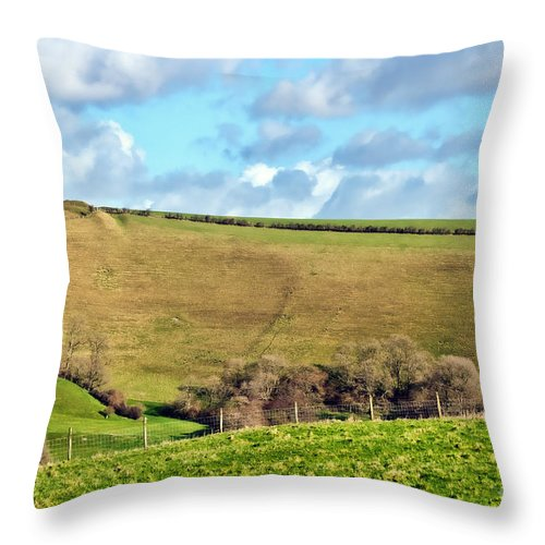Dorset Throw Pillow featuring the photograph Pasture Land - Dorset by Susie Peek