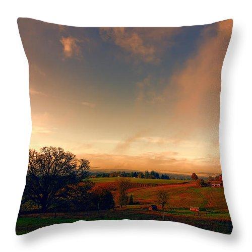 Pasture Throw Pillow featuring the photograph Pastureland by Don Schwartz