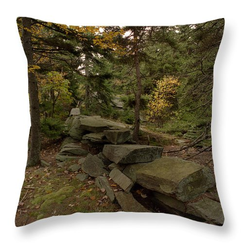 Wood Throw Pillow featuring the photograph Pastures Past by Skip Willits