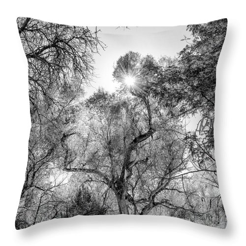 Patagonia Reserve Throw Pillow featuring the photograph Patagonia Bw 4 by Larry White