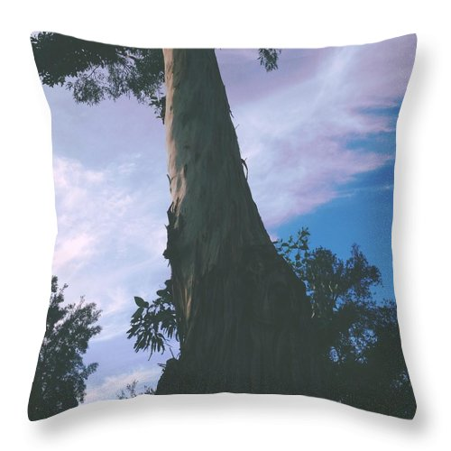 Tree Throw Pillow featuring the photograph Patch Og Blue by Judith Kitzes