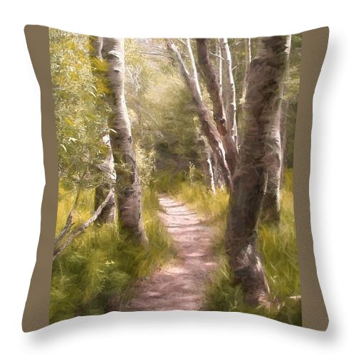 Woods Throw Pillow featuring the photograph Path 1 by Pamela Cooper