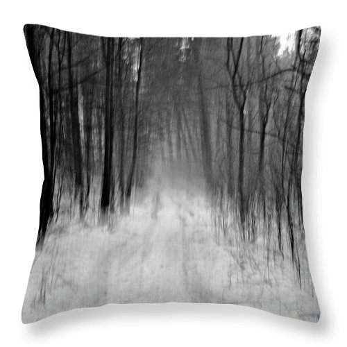 Forest Throw Pillow featuring the photograph Path In A Forest by Maja Sokolowska