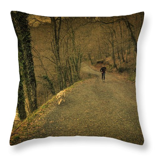 Woods Throw Pillow featuring the photograph Path Iv by Zapista Zapista