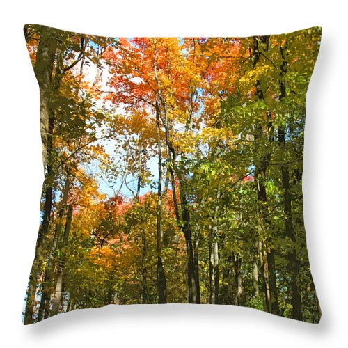 Fall Throw Pillow featuring the photograph Path Through The Woods by John Lautermilch