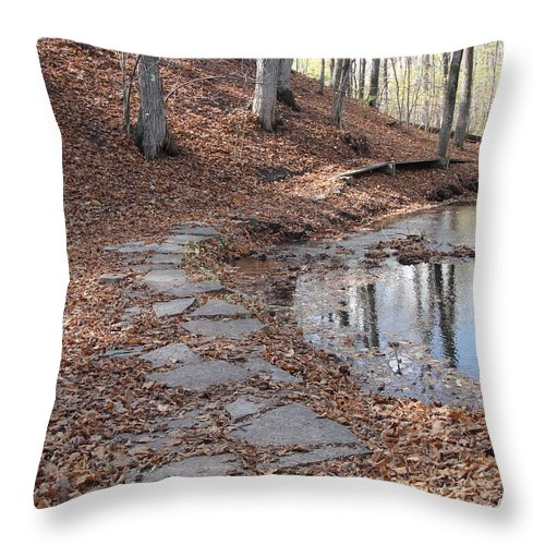 Path Throw Pillow featuring the photograph Path To Somewhere by Tiffany Erdman