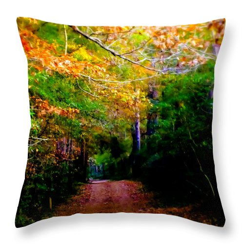 Paths Throw Pillow featuring the photograph Paths We Choose by Karen Wiles