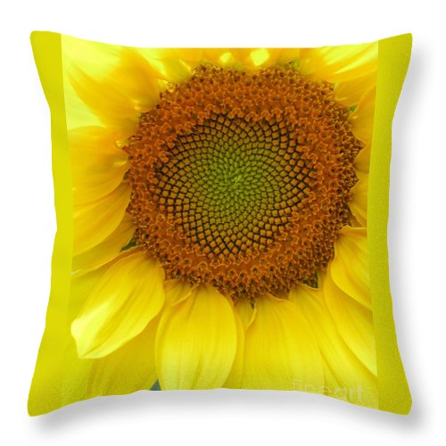 Sunflower Throw Pillow featuring the photograph Patterns Of Nature by Laura Corebello