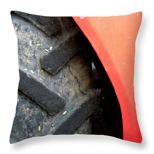 Throw Pillow featuring the photograph Pc 65 by Marlene Burns