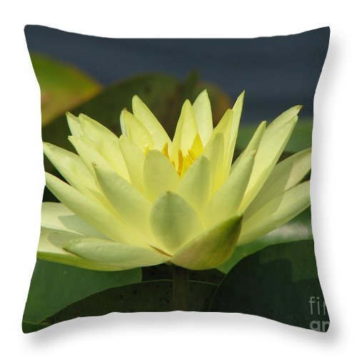 Lillies Throw Pillow featuring the photograph Peace by Amanda Barcon
