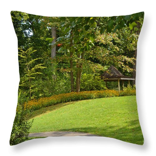 Summer Throw Pillow featuring the digital art Peace by Eva Kaufman