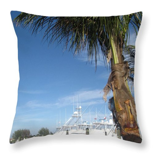 Jupiter Throw Pillow featuring the photograph Peace On The Water by Catie Canetti