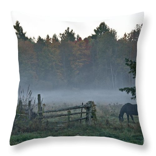 Throw Pillow featuring the photograph Peaceful Farm Scene by Cheryl Baxter